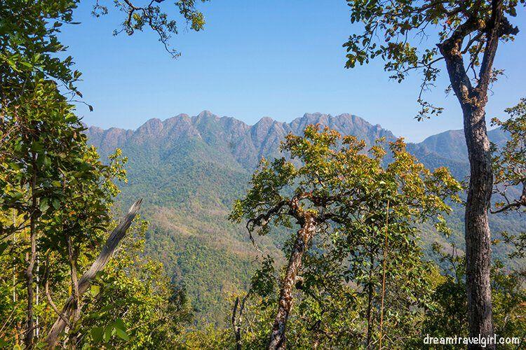 Jungle trekking: views of distant mountains