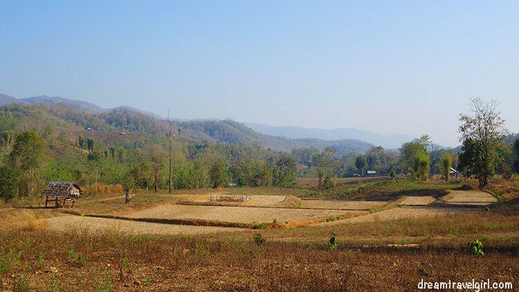 Khun Yuam: growing fields