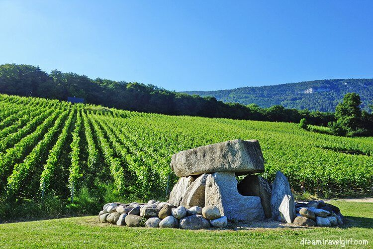 Dolmen and vineyards