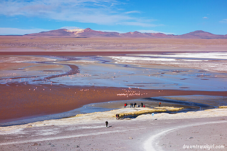 Laguna Colorada, tour del salar de Uyuni, Bolivia