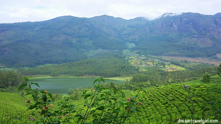 Places to visit in South India: Munnar, Kerala