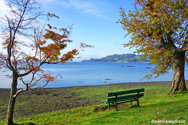 Bench with lake views
