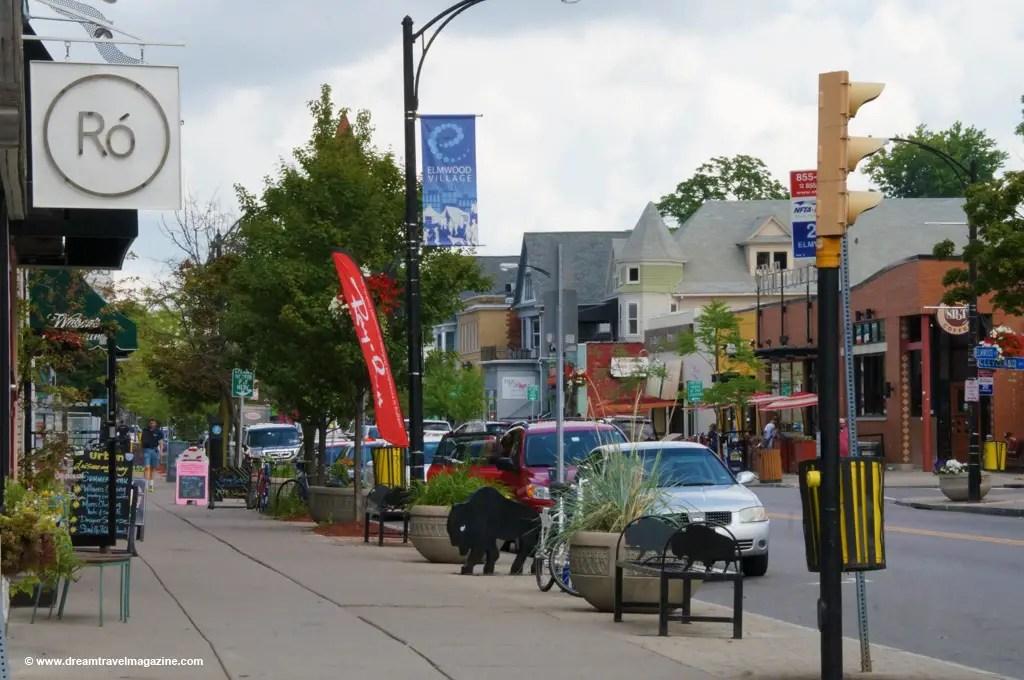 City of Buffalo New York Buzz Elmwood Village