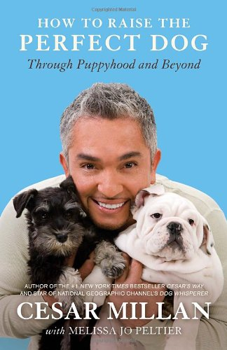 How to Raise the Perfect Dog through Puppyhood and Beyond by Cesar Millan