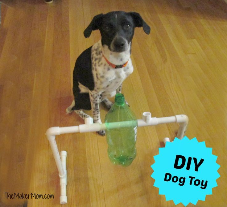 Do-it-Yourself Dog And Puppy Toys