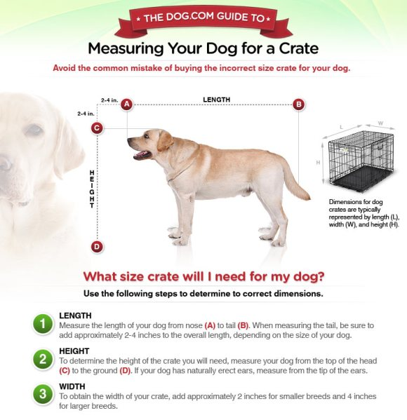 Measuring-for-Dog-Crate