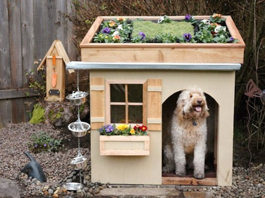 Dog Kennels For Sale In Portland Oregon