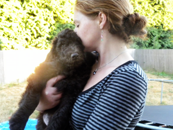 Me Holding one of our Chocolate Labradoodle puppies!