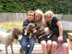 Kids playing with the puppies at 8 weeks...