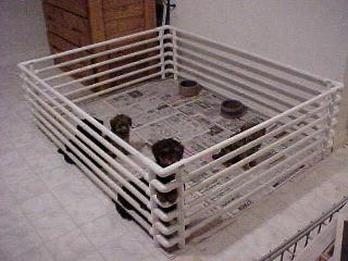 How to make your own puppy pen out of PVC Pipe