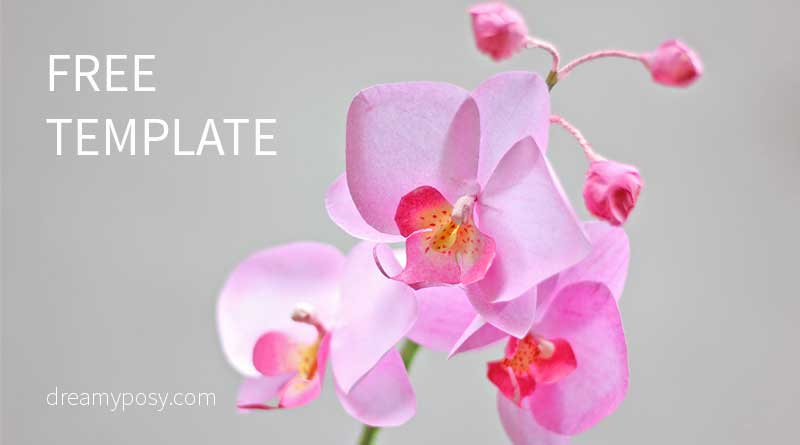How To Make Orchid Paper Flower From Printer Paper FREE