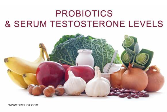 Probiotics & Serum Testosterone Levels Image