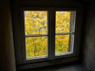 Fenster mit Herbststimmung