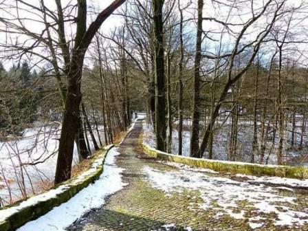 Weg hinauf zum Jadgschloss Grillenburg mit Allee