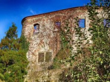 Schloss Scharfenberg Außenansicht mit Fenstern und Rankpflanzen