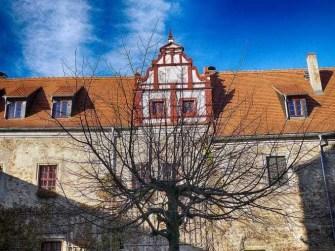 Schloss Scharfenberg Innenhof Baum