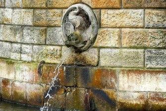Wasserspeier Fisch Stein
