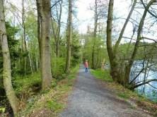 Waldweg See Ufer Bäume