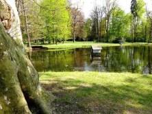 Teich Entenhaus Bäume Schloss Pillnitz