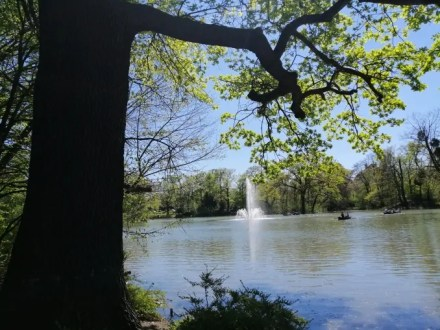 Carola See Springbrunnen