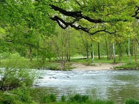 Flussbett Bachlauf Natur Landschaft