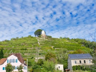Schloss-Wackerbarth-Weingut-Bild-071