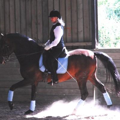 MASTER THE BALANCE, MASTER THE HORSE