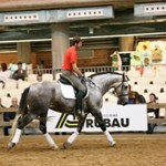 BECOMING MASTERS OF MOVEMENT WITH CONNECTED RIDING®