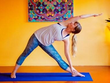 yogi22