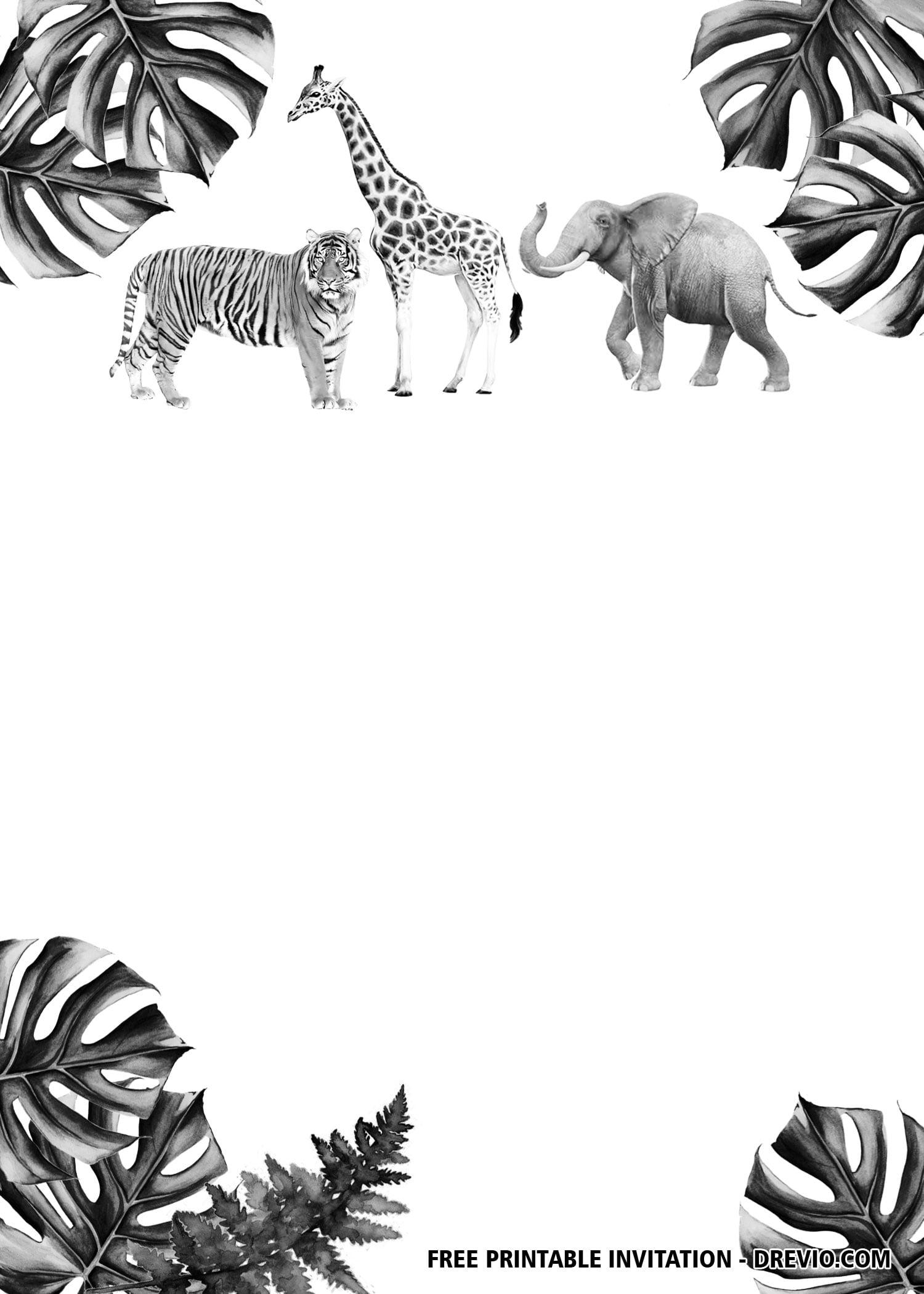 safari invitation template free