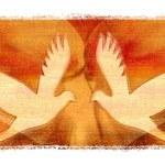 peace-dove-588081__340