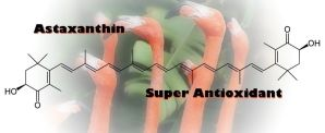 Astaxanthin Wonder Benefits
