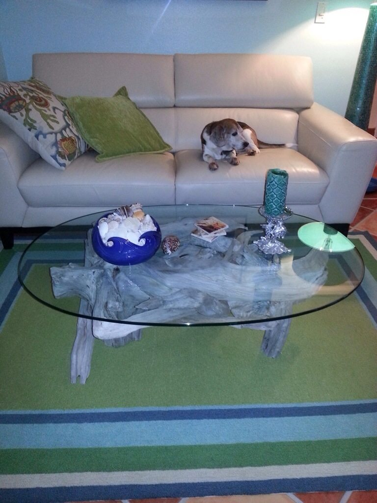 Apollo Beach driftwood coffee table