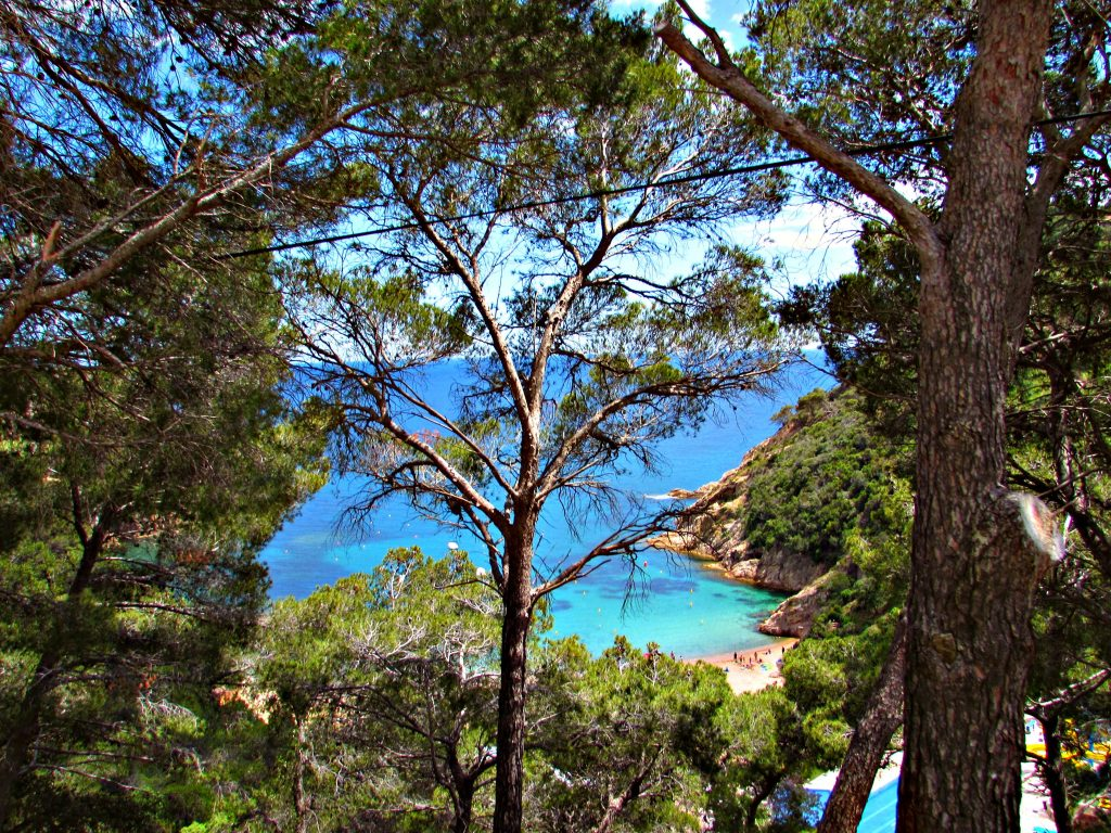 A secret beach cove along the Costa Brava just south of Sant Feliu de Guiixols in Girona, Catalonia
