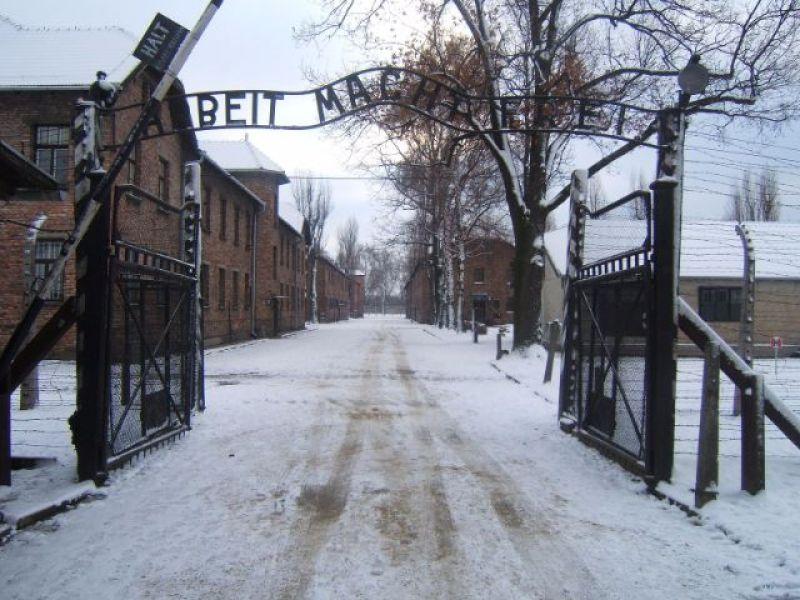 Auscwhitz Birkenau Tour