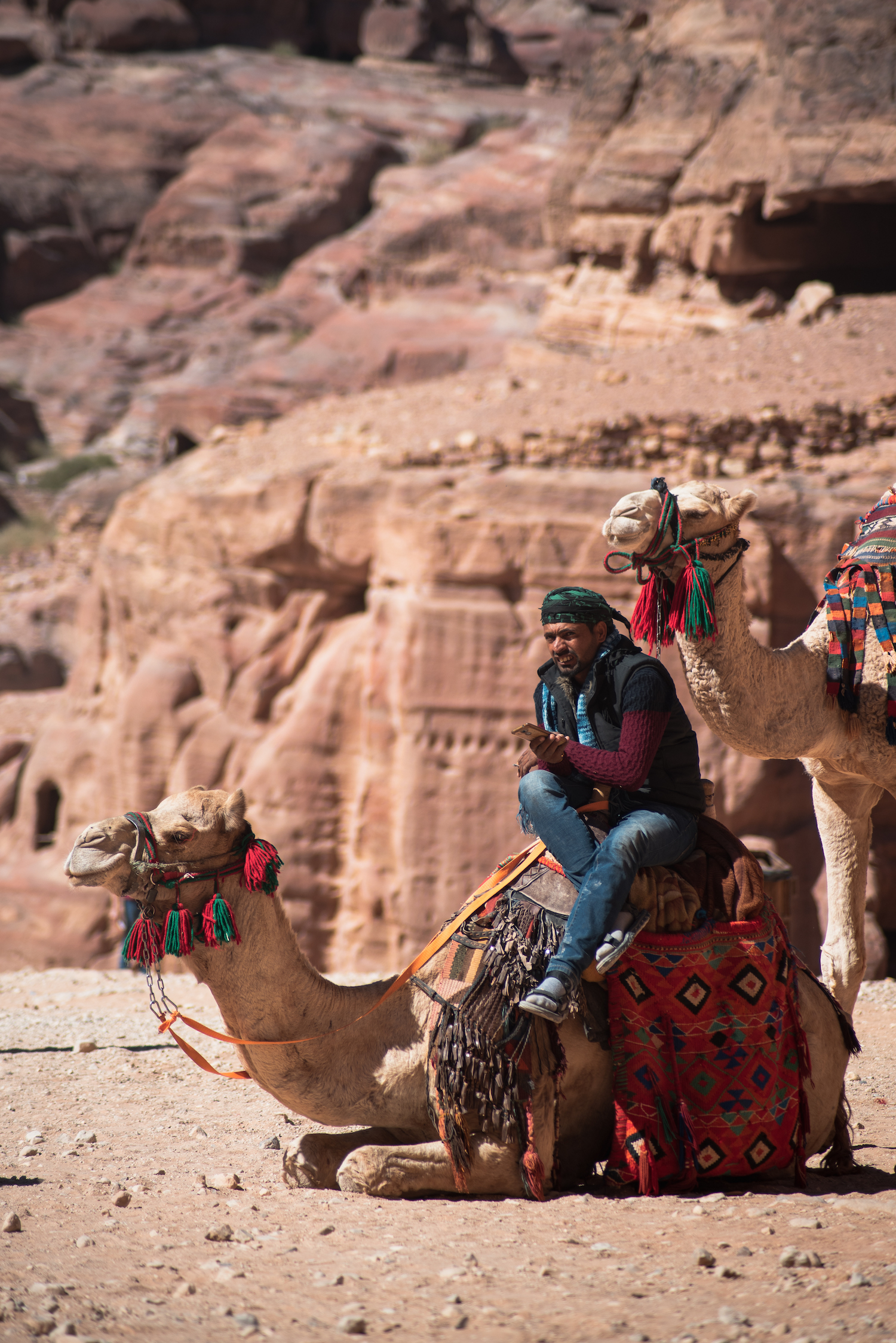 Modern-day Petra. A camel-taxi rider with a gold phone.