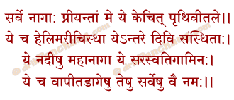 Happy Nag Panchami 2020 Puja Vidhi Time Mantra Wishes SMS Status Images Photos Wallpapers Dp