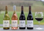 2020 Stoller Family Estate Pinot Noir Rose Willamette Valley