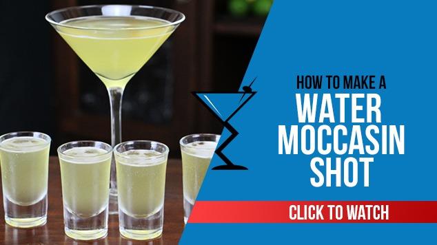 Water Moccasin Shot