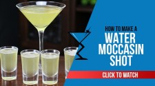 Water Moccasin Shot