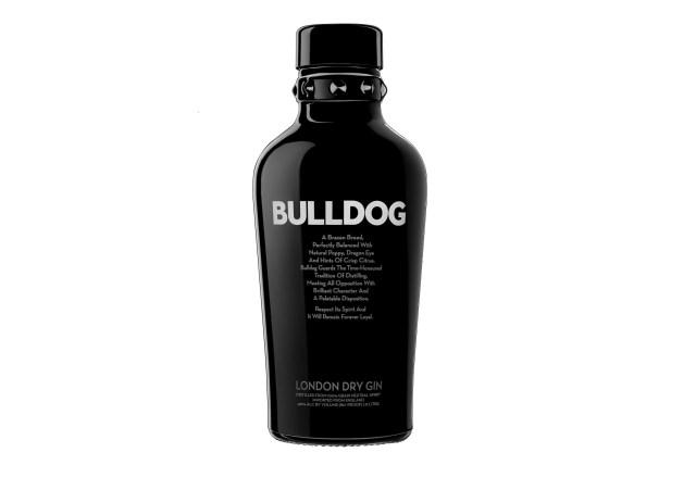 "bulldog gin creates ""americas"" division"