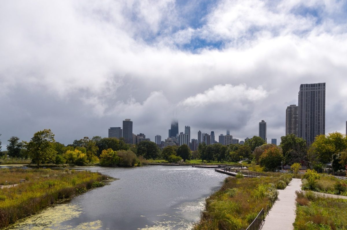 Chicago Skyline from Lincoln Park Zoo. Photo by Andrew Seaman via Flickr CC