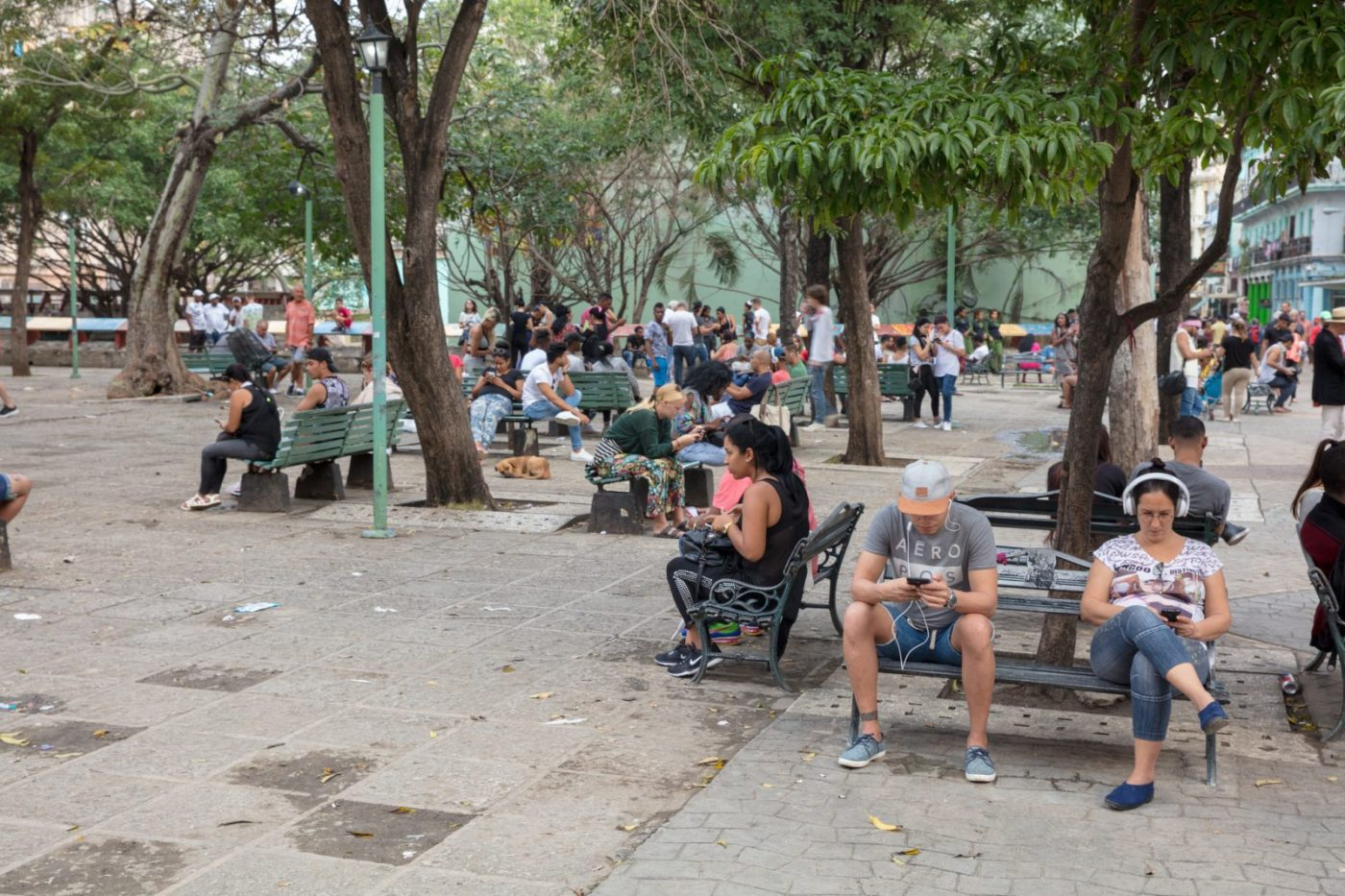 Internet in Cuba: Everyone busy on their phones at a wifi hotspot in Cuba. Photo by Duncan via Flickr CC.