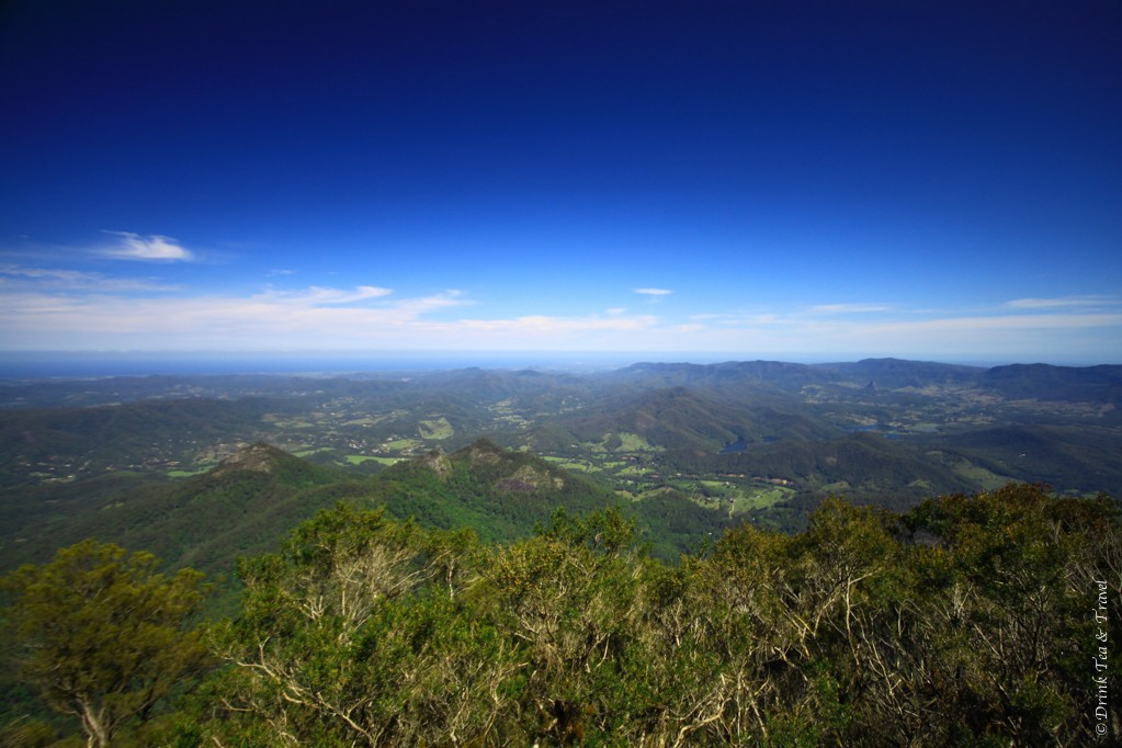 View from the top of Mt Warning, New South Wales