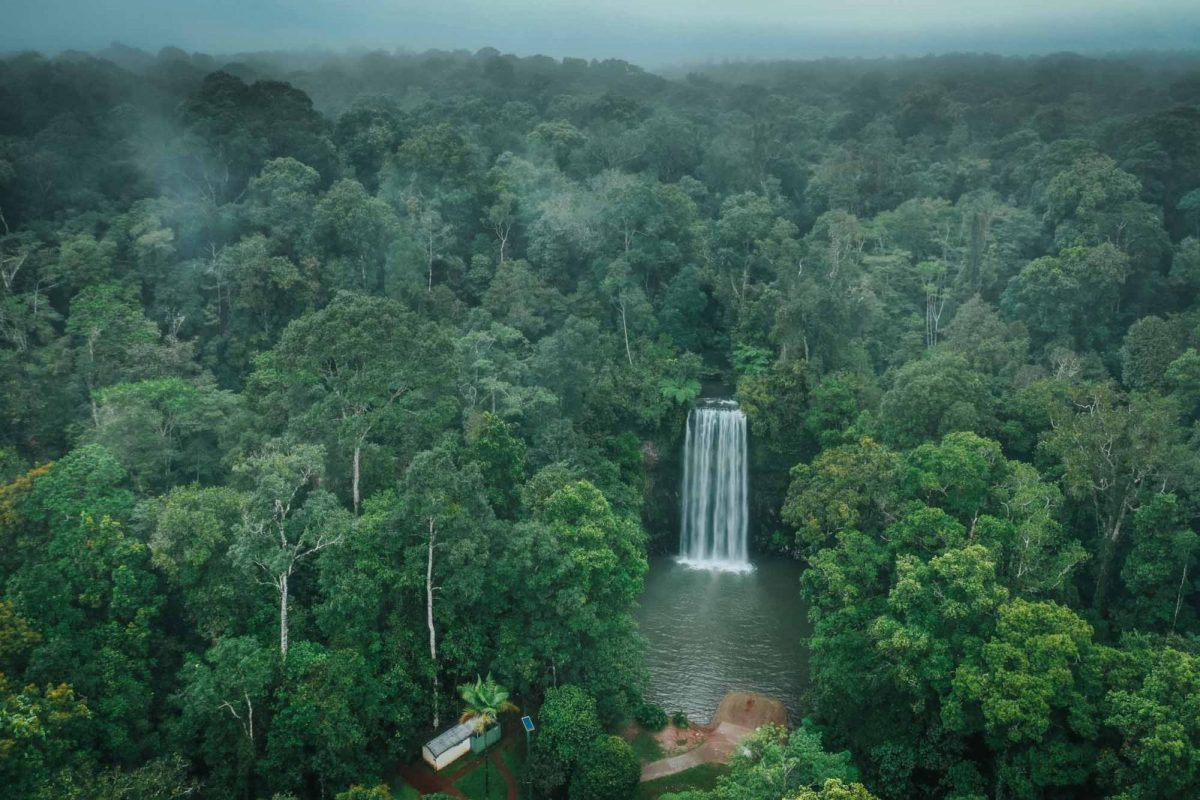Millaa Millaa Waterfall, Atherton Tablelands, Cairns, Australia