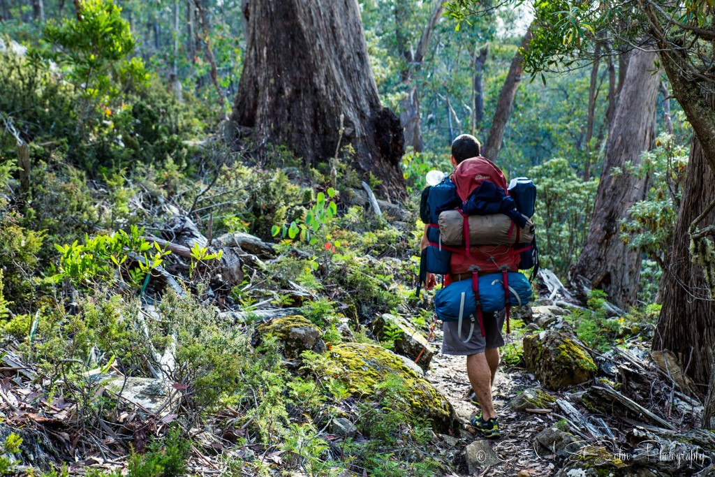 Loaded packs on the way down. Walls of Jerusalem National Park.