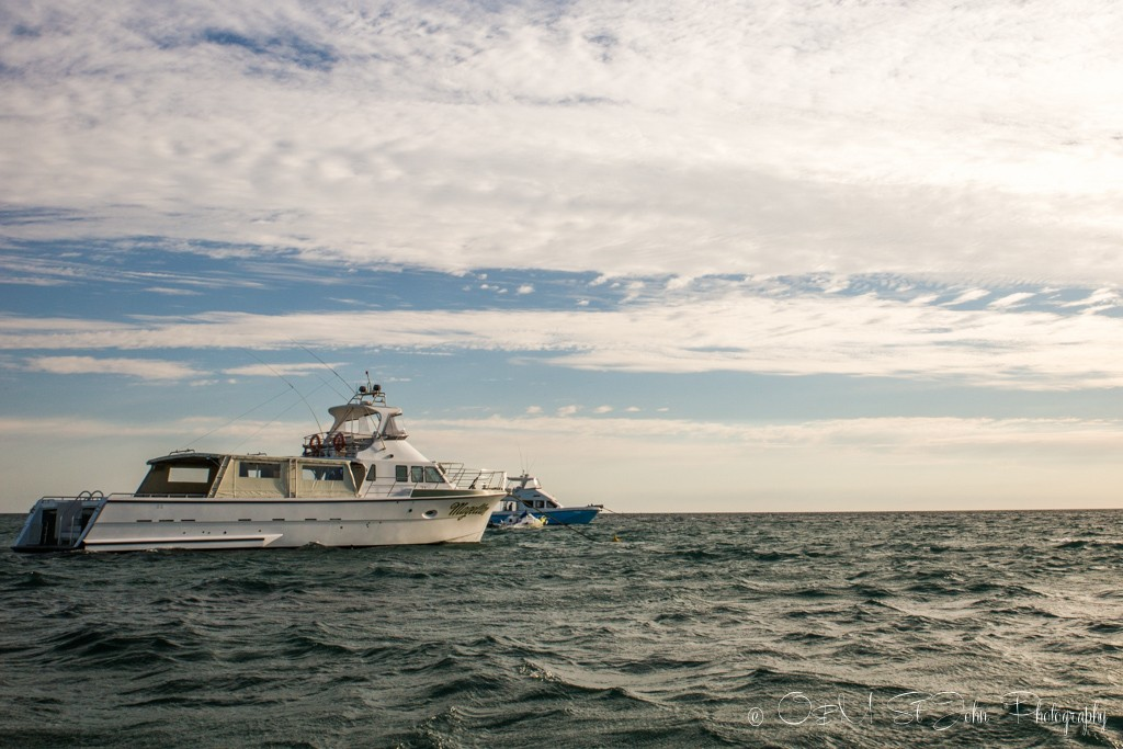 The Magellan patiently awaits our arrival. Exmouth. Ningaloo Reef. Western Australia