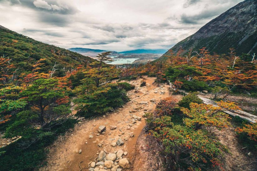 Fall colours paint the French Valley at Torres del Paine National Park, Patagonia, Chile