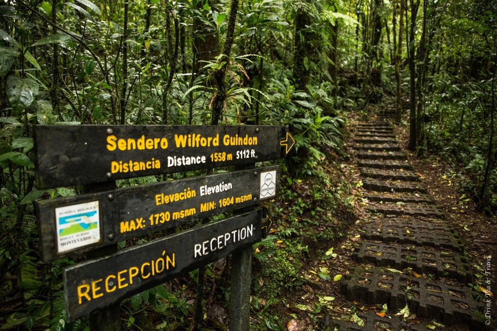 Reasons to visit Monteverde Cloud Forest Reserve, Costa Rica