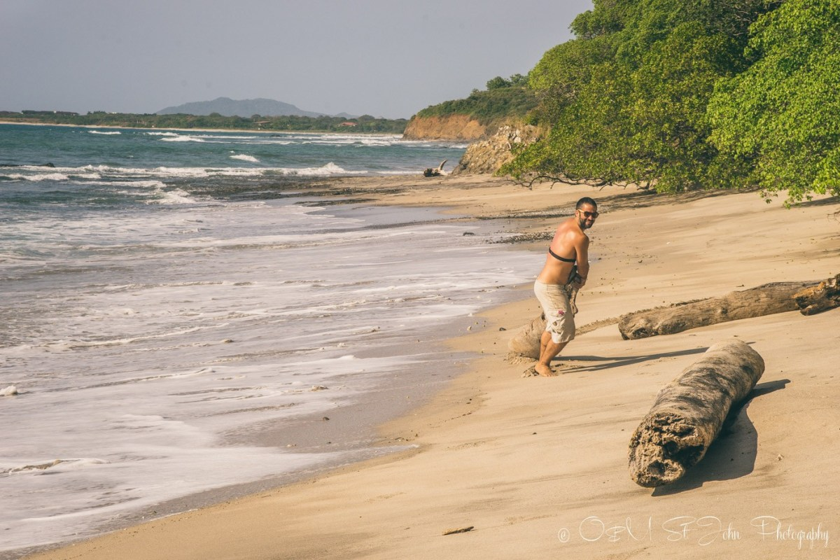 Max hauling driftwood from the beach. Wedding prep. Lagartillo, Costa Rica